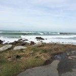 Thumping waves for the Open